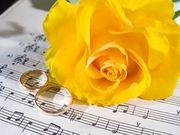 Музыка и ведение для Вашего праздника!
