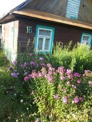 Продается жилой деревенский дом в агрогородке Матеевичи, 23км. от Брест