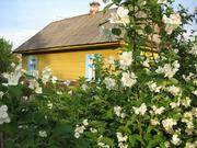 Продам дом в а.г. Междулесье,  Берёзовского района